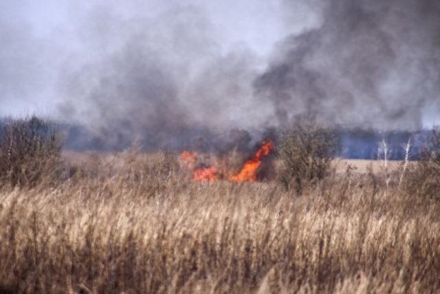 bruciare l\'erba  foto stock  Natura i campi e steppe