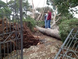 danni tornado Selva di Fasano