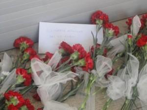 fiori-rossi-300x224