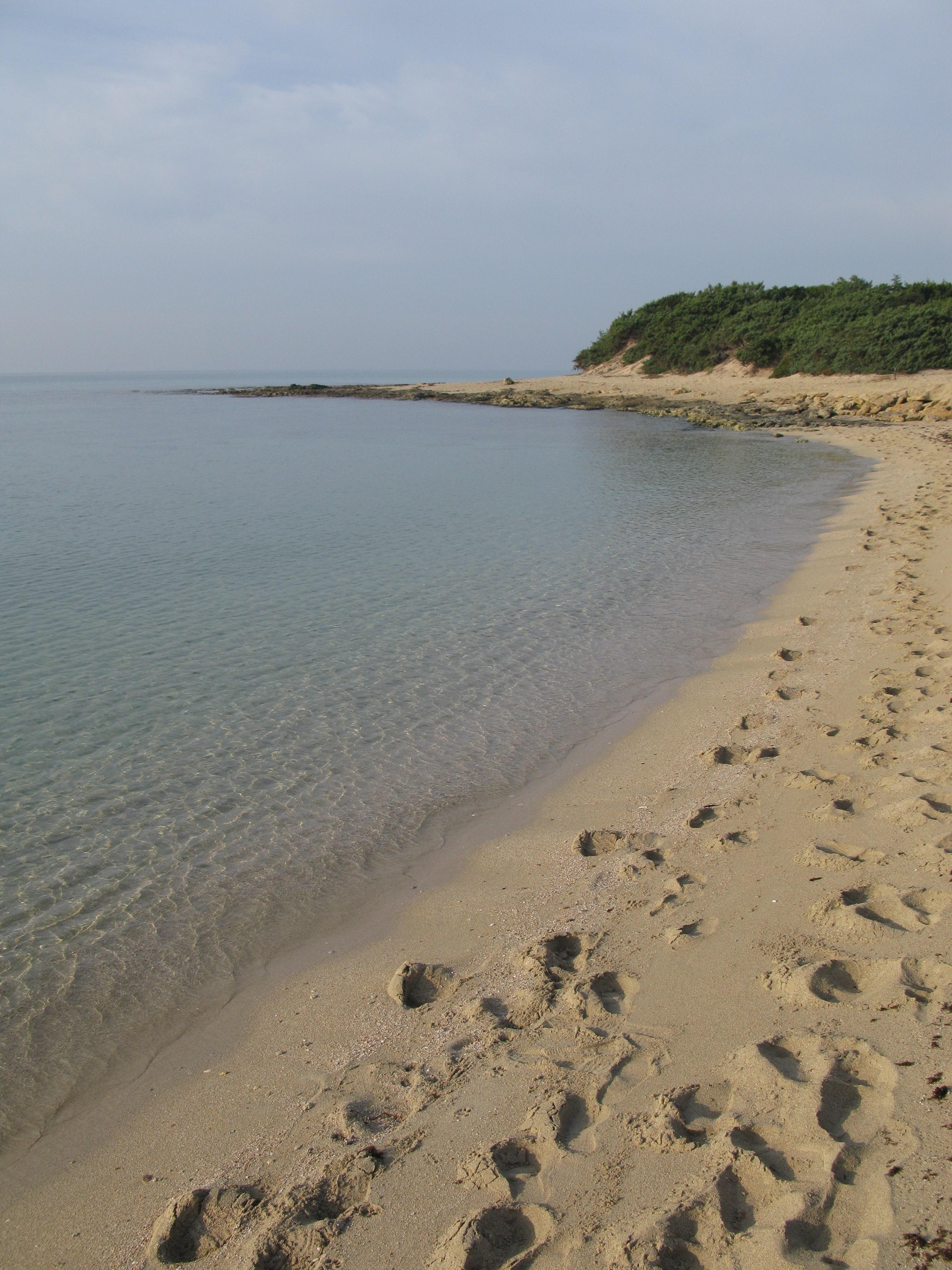 Matrimonio Spiaggia Porto Cesareo : Riva degli angeli dalla criminalità alla nuova vita