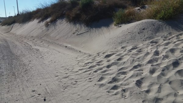 Ammassi di sabbia e disagi a torre chianca la denuncia for Setacciavano la sabbia dei fiumi